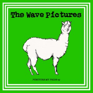 The Wave Pictures- Puncture My Pride