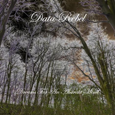 Data Rebel - Dreams for an Abstrakt Mind
